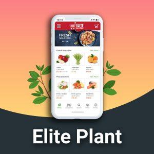 Elite Grocery plant